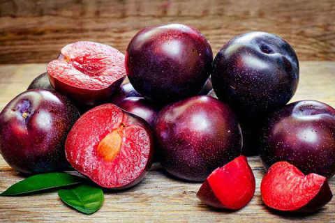 李子是什么水果
