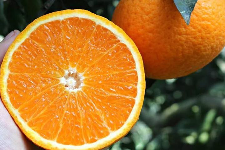 食用橘子的注意事项