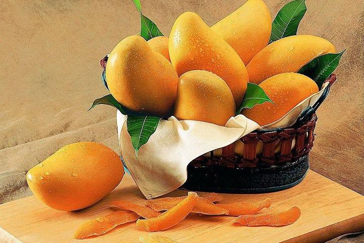 芒果这种水果,你应该知道的知识点