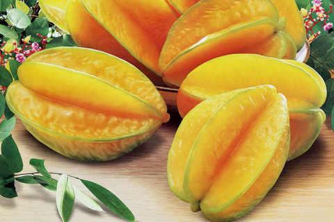 杨桃哪些人不能吃