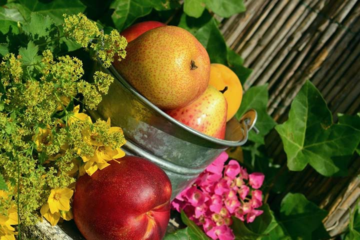 晚饭后吃水果容易得酒精肝