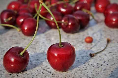 樱桃什么时候成熟