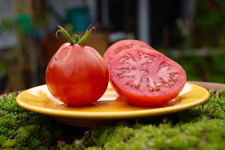 番茄能不能放冰箱
