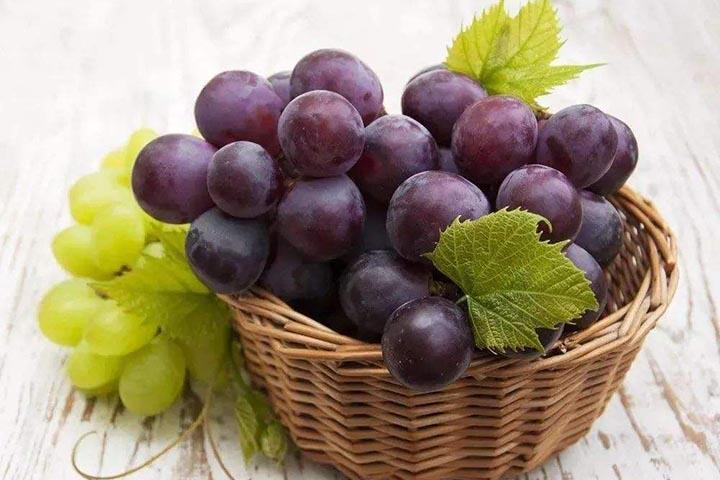 陕西葡萄什么时候成熟