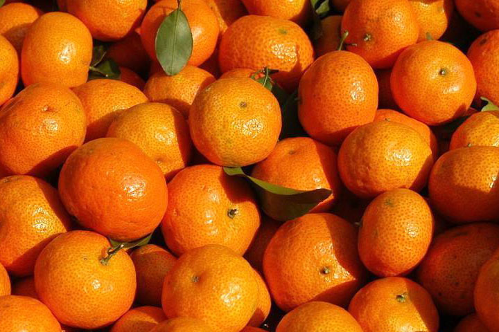 砂糖橘吃了上火吗
